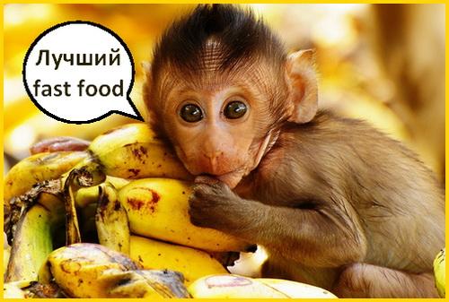 бананы и обезьянка