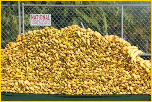 гора бананов