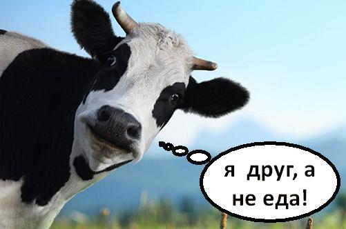 коровка не еда