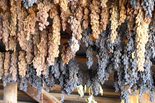 сушка винограда в тени