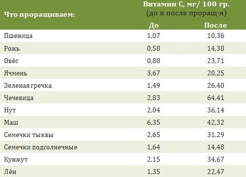 проростки_1